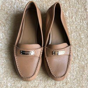 ✨Coach Shoes